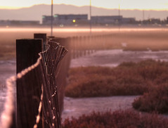That fence at the end of San Francisco Bay (joiseyshowaa) Tags: california cal ca silicon valley san francisco sf bay jose morning dawn mist mountain fence twilight focus dof depth selective milpitas farm barbed wire urban rural traffic skyline dusk sunset telephone pole