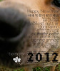 CARTE DE VOEUX- beehome- 2012