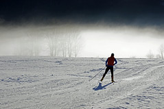 Cross-country skiing in a Paradise (dorena-wm) Tags: schnee winter light sun mist snow man ski tree sport fog bayern bavaria licht nebel january mann sonne baum januar 2012 crosscountryskiing dunst langlauf loipe jachenau crosscountryskirun dorenawm