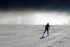 Cross-country skiing in a Paradise (dorena-wm) Tags: schnee winter light sun mist snow man ski tree sport fog bayern bavaria licht nebel january mann sonne baum januar 2012 crosscountryskiing dunst langlauf loipe jachenau crosscountryskirun dorenawm