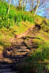 Got To Keep the Loonies on the Path (headless.chicken.) Tags: stairs scotland steps loch lomond lochlomond balmaha
