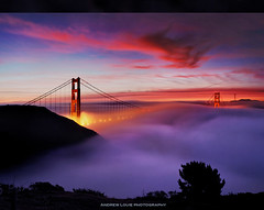 The Dreamer (Andrew Louie Photography) Tags: sf bridge sun love fog sunrise landscape golden bay gate san francisco day cityscape hawk anniversary marin hill dream dramatic jazz area passion headlands catcher rise 75 drama dreamer
