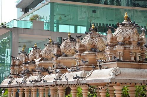 Doves on the temple rooftops ©  Still ePsiLoN