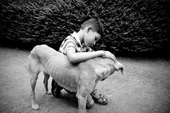 Kids and cuteness (Kals Pics) Tags: blackandwhite bw pet art monochrome kids children photography blackwhite kid nikon child 1855mm cuteness chennai colorless tamilnadu teni petcare animalcare d40 theni vellimalai kalspics behavinghuman