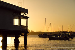 Watsons Bay, Sydney, NSW (Bass Photography) Tags: sunset sea water marina harbor boat harbour yacht sydney nsw newsouthwales sydneyharbour wastsonsbay