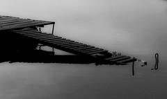 l'essenziale (mat56.) Tags: white lake monochrome torino lago monocromo landscapes minimal piemonte balck minimalism minimalismo bianco nero pontile passerella minimalista viverone attracco essenziale piverone mat56 paesagi
