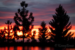 Day24_3652012 (Kenny Bemis) Tags: sunset sky colors forest project landscape tahoe national 365 kenny bemis