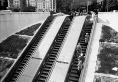 Escalator Dupont (duncanhill) Tags: street people train photography photo dc washington photographer metro escalator photojournalism documentary dupontcircle madaris duncanhill
