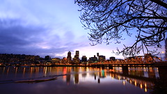 Winter in Portland Oregon 01/2012 By Khate Horasilp