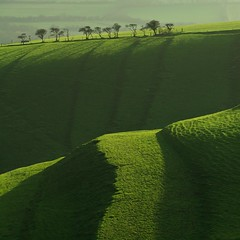 Dorset 'winter' view (Timo Lieber) Tags: light black green grass sunrise canon view large taken before just lee dorset fields bestcapturesaoi elitegalleryaoi