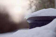 winter sun (martinalinnea) Tags: winter sunlight snow 50mm vinter sn januari 2012 solljus alafors dslra300 ginordicjan12 mygarden2012 lebrcke lebrckevgen