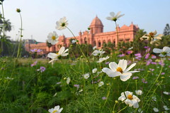 Ahsan Manzil ( ) (*illusionist*) Tags: family flower building history beautiful museum river garden construction nikon palace national dhaka 1855mm nikkor jpeg residential bangladesh bengali beauti ahsan buriganga nawab  manzil d5100