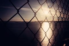 Across the Bay (Leighton Wallis) Tags: sanfrancisco california birthday ca usa sun skyline fence bay cityscape unitedstatesofamerica goldengatebridge 75thanniversary ggnpc11