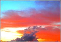 sky paradise #1