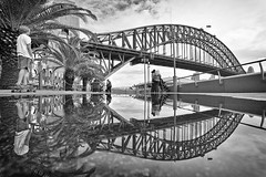 skate on by (Luke Tscharke) Tags: street bw reflection pool reflections palms puddle still wide sydney skater pram sydneyharbourbridge 1740l mumwithkids nexttotheferrywharf 600thflickrupload