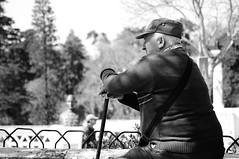 (mgkm photography) Tags: street cidade urban blackandwhite black portugal monochrome photography photo nikon bokeh sintra gimp sigma pretoebranco bnw blackandwhitephotography blackwhitephotos ptbw ilustrarportugal d3100 streettogs igersportugal vision:mountain=086 vision:outdoor=097 bnwportugal