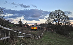 Half Light Grid (Jim the Joker) Tags: train logs railway freight class56 allstretton 56113 type5 colasrail 6m54 chirkkronospan themarchesline