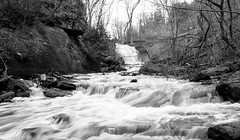 To the falls (BenJJohnston) Tags: trees bw nature water spring smokey flowing hollow