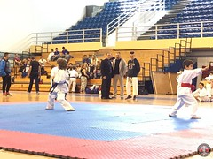 stefanou_15_5_2016_knockdown_46