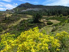 The colours of Nothern Spain (rimerbl) Tags: leica espaa mountains landscape spain mountainside castillaylen leicadlux6 dlux6