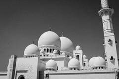 IMG_1193.jpg (svendarfschlag) Tags: uae mosque abudhabi unitedarabemirates sheikhzayedmosque   vereinigtenarabischenemiraten