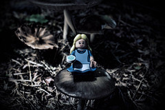 """""""I knew who i was this morning, but ive changed a few times since then"""" (Silverio Photography) Tags: nature mushroom photoshop canon toy lego alice elements pancake 24mm minifig wonderland vignetting hdr topaz adjust collecatble"""