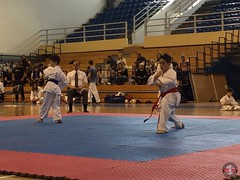 stefanou_15_5_2016_knockdown_125