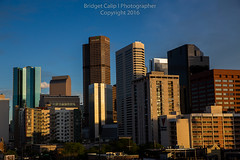 Close-Up of Downtown Denver Skyscrapers from Lower Downtown (Bridget Calip - Alluring Images) Tags: morning travel sunset skyline architecture sunrise buildings evening colorado cityscape exterior skyscrapers outdoor dusk denver crime rockymountains blueskies civiccenter allrightsreserved metalandglass queencity copyrighted greentrees 2016 denverbroncos capitalcity capitalcities dramaticclouds highclouds denvercityandcountybuilding milehighcity denverskyline downtowndistrict buildingcomplex vacationdestination cityclouds batmanshooting capitalofcolorado centennialstate queencityoftheplains bridgetcalip alluringimages marijuanalegal milehicity alluringimagesllc 5280abovesealevel