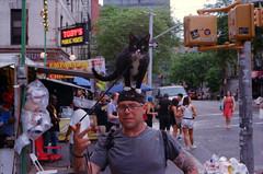 The Value of a Dollar (karstenphoto) Tags: new york city nyc portrait people newyork film analog cat funny kodak manhattan contax g2 catman cathat ektar thebigapple shootfilm filmisnotdead cathatman