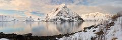Kjerk-fjorden #1 ~ Reine [ les Lofoten ~ Norvge ] (emvri85) Tags: winter sunset snow mountains norway zeiss assemblage hiver neige lofoten coucherdesoleil montagnes panoramique 21mm norvge nordland leefilters