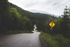 Winding Road Ahead 2 (eric.vanryswyk) Tags: road winter canada black lines car rain sign forest 50mm spring nikon december outdoor pavement okanagan westbank may automotive columbia british winding kelowna westside nikkor f18 rd 2016 d610