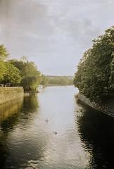 Maybachufer (Lenita_Berlin) Tags: berlin kreuzberg analogue kodakgold canonetql17giii