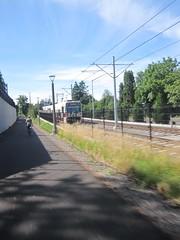 A Park Ave-bound train passes us (Tysasi) Tags: trolley interurban permanent sn orangeline brevet 200k randonneuring sd600 pmlr portlandmilwaukielightrail portlandripplebrookportland