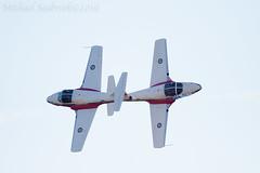 Close Pass (Shadows in Reflection) Tags: michigan canadian airshow ypsilanti snowbirds waynecounty willowrunairport closepass