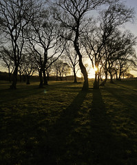 Low Winter Sun (kenny barker) Tags: trees winter sunset nature landscape lumix scotland shadows lowsun falkirk roughcastle highbonnybridge panasoniclumixgf1 panasonicgf1 welcomeuk kennybarker