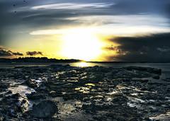 Darkness comes [Daily Project] (DavGoss) Tags: ocean sea sky cloud sun house tree bird nature birds norway rock photoshop canon dark landscape eos rocks darkness hdr nordland photomatix 550d cs5 ti2 sleneset davgoss