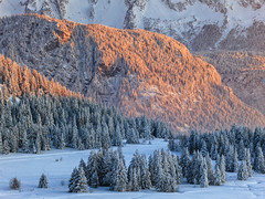 Warm & Cold (Philipp Klinger Photography) Tags: morning travel blue schnee trees winter light shadow vacation sky sun mountain holiday snow ski france mountains alps cold tree travelling nature yellow forest montagne alpes grenoble canon landscape frankreich warm europe frost skiing shadows zoom trails freezing frosty rhne powershot berge trail freeze tele alpen transition philipp alpenglow chamrousse s100 klinger isre powershots100 rhnealpes canonpowershots100 dcdead