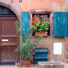 Une fentre  Riquewihr ~ Window in Riquewihr (Michele*mp) Tags: flowers france fleurs geotagged frankreich europe alsace geranium volets riquewihr hautrhin lesplusbeauxvillagesdefrance michelemp leuropepittoresque geo:lat=4816652290949762 geo:lon=7297827882278398