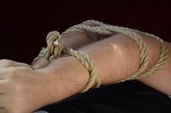 DSC_8903 (jakewolf21) Tags: work cowboy boots bondage rope sierra jeans hogtied ariat