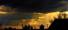 Heavy rays (mlphoto) Tags: trees chimney sky cloud tree silhouette clouds ray pentax silhouettes himmel wolke wolken rays sunrays bume industrie baum schornstein sonnenstrahl sonnenstrahlen leverkusen strahl strahlen pentaxk20d mlphoto mlphoto markuslandsmannzenfoliocom