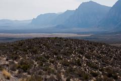 Red Rock Canyon, Nevada (LenDog64) Tags: redrockcanyon terrain tourism nature rock landscape sony united nevada scenic northamerica states february alpha 700 tamron rugged 2012 a700 tamron1750 tamronspaf1750mmf28xrdiiildasphericalif lightroom3 sonya700 sonyalpha700 sony700