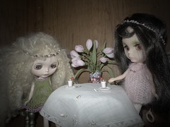 """9/52 weeks of Blythe  """"What do you mean-that's breakfast??!!!!"""
