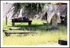 ....et qu'il repose en paix..!!!! (LILI 296....partie se ressourcer avec Nunu...) Tags: stjohns humour ombre antigua dormir banc homme croix tombe sommeil sieste cimetierre croisire carabes spulture canoneos450d