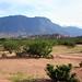 14 panorama valle dans la région de salta