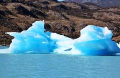 Canal de los Tmpanos (Vanu ) Tags: patagonia santacruz ice argentina canon glaciar hielo icebergs elcalafate t3i tmpanos glaciares 600d