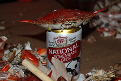 The aftermath (Like_the_Grand_Canyon) Tags: travel red vacation food usa holiday rot beer america us md essen united may maryland crab can baltimore national meal shellfish seafood bier states steamed amerika bohemian natty boh krabbe dose krabben 2014 krebse