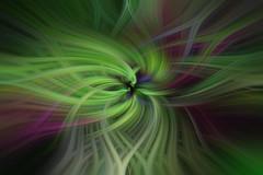 Twirl #3 (mimsjodi) Tags: twirl