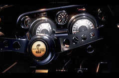 Baby Baby Ruby Sue (lifegphotos) Tags: detail classic cars ford car vintage muscle shelby musclecars ubisoft thecrew gt500 ps4