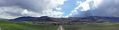 The view from Burrowing Owl winery (jenniedo) Tags: oliver okanagan burrowingowl