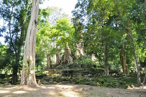 angkor - cambodge 2014 71